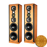 LEGACY Audio Focus HD Olive Ash Burl